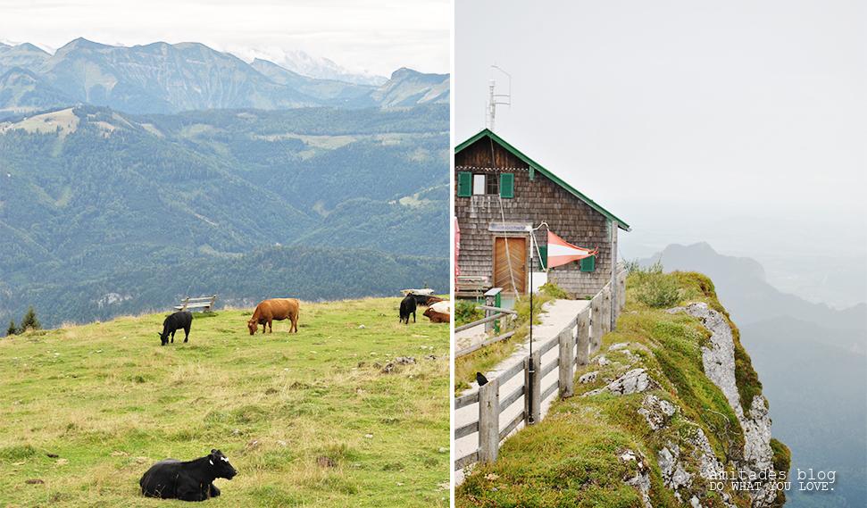 Österreich_3